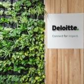 Deloitte –  pozytywny wpływ w SGH